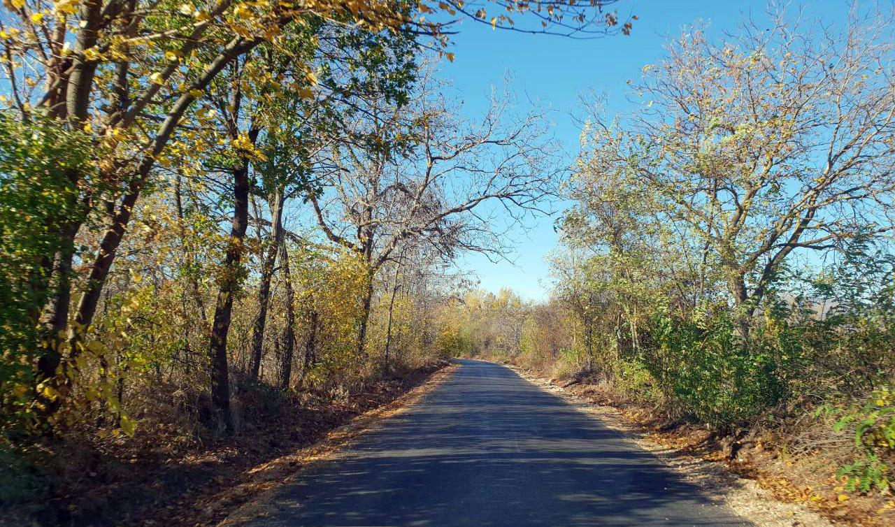 Asfaltiran put prema selu Vasilj